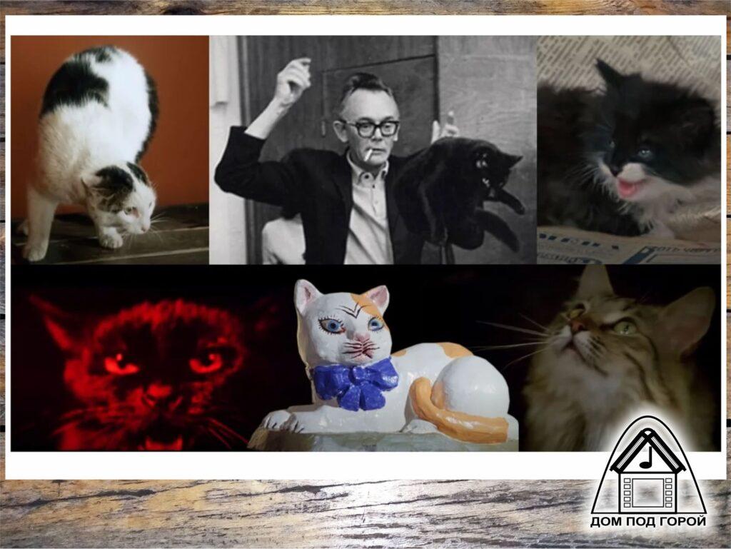 Кошки в фильмах Гайдая